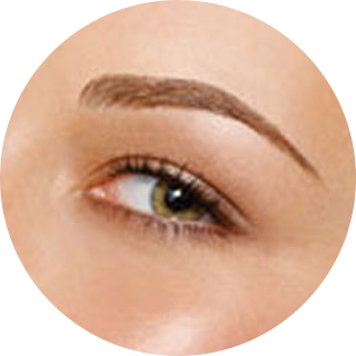 womens eyebrows